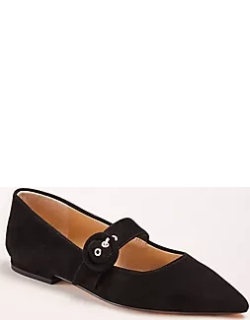Ann Taylor Janelle Suede Mary Jane Flats