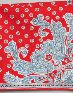 JoS. A. Bank Men's Paisley & Medallion Linen and Cotton Pocket Square, Red, One
