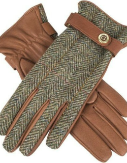 Dents Women's Cashmere Lined Harris Tweed And Deerskin Leather Gloves In Havana/olive/pine