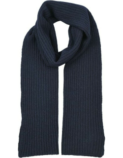 Dents Men's Lambswool Blend Knitted Scarf In Navy